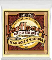 Ernie Ball 2065 Earthwood Mandolin Medium Loop End Acoustic