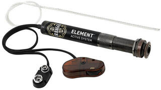 L.R. Baggs Element Active System VTC