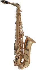Conn AS501 Eb-Alto Saxophone