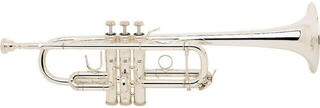 Vincent Bach 180SLG Stradivarius